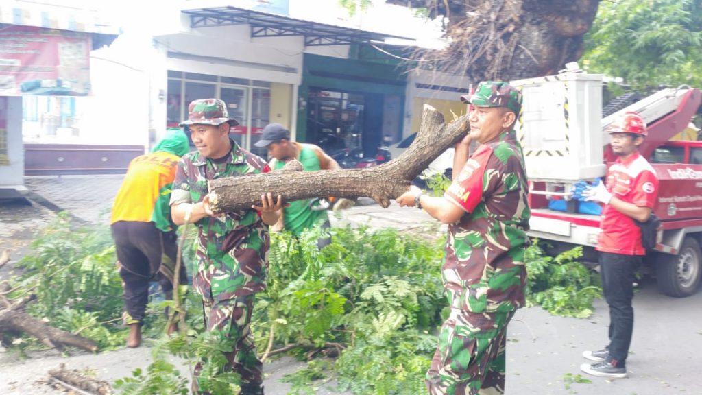 Cegah Bahaya Pohon Tumbang, TNI Bersama OPD Pemkot Surakarta Pangkas Ranting Pohon